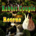play 8B Rabbit Couple Rescue Escape