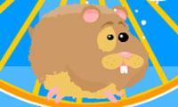 play Run Run Hamster