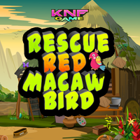 Rescue Red Macaw Bird game