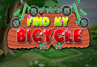play Find My Bicycle