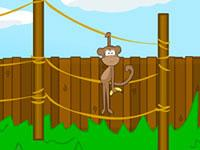 play Mission Escape - Zoo