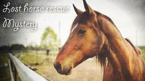 play Lost Horse Rescue Mystery
