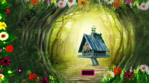 play Tazzy Parrot Escape