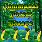 play Communal Forest Escape