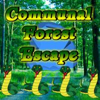 Communal Forest Escape game
