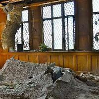 Abandoned Crosley Building Escape game