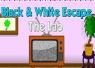 Black And White Escape Lab game