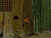 Amazing Redwood Forest Escape game