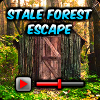 play Stale Forest Escape Walkthrough