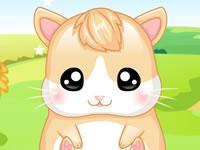 play My Baby Hamster
