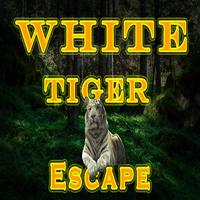 play 8B White Tiger Escape