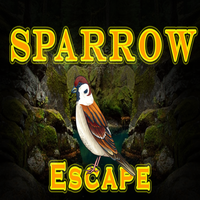 8B Sparrow Escape game