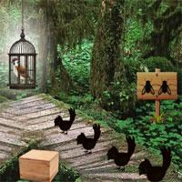 Sparrow Escape 8Bgames game