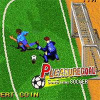 Pleasure Goal – Futsal game