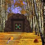 Birch Forest Escape game