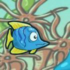 Fish Race Champions game