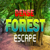 play 8B Dense Forest Escape