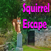 play 8B Squirrel Escape
