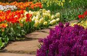 play The Flower Garden