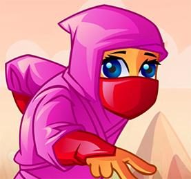 Ninja Vital Treasures game