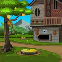 play Games4Escape Forest Farm House Escape