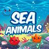 play Marine Animal Collocation Look - You Can Play With