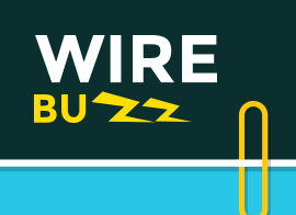 Wirebuzz game