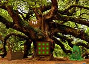 Oak Tree Forest Escape game