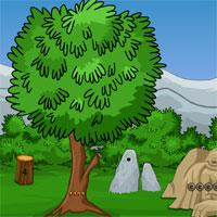 Games2Jolly Escape The Forest Tiger game
