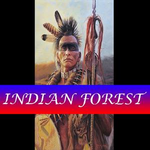 Indian Forest game