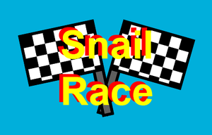 Snail Race game