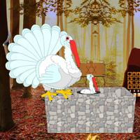 play Escape Game: Save The White Turkey