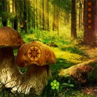 play Avmgames Fantasy Mushroom Forest Escape