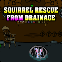 play Squirrel Rescue From Drainage