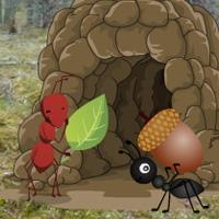 play Ant Hill Forest Escape