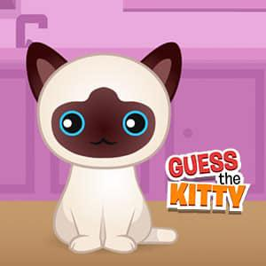 play Guess The Kitty