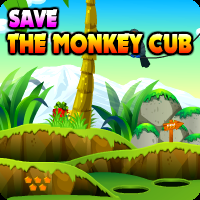 play Save The Monkey Cub