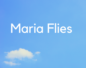 Maria Flies game
