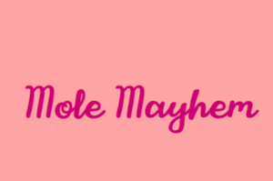 Mole Mayhem game