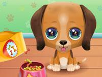 play The Cute Puppy Care