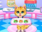 play Sweet Rainbow Kitty Cookies