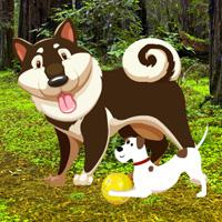 play Save The Wounded Dog