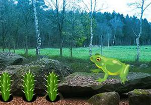 play Escape From Bullfrog Forest