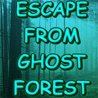Escape From Ghost Forest game