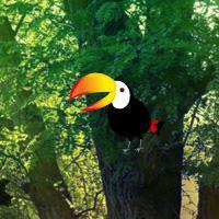 play Bio Forest Escape