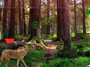 play Wild Fox Forest Escape