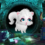 play Cute White Cat Rescue 2018