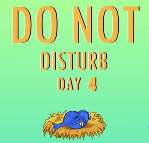 Nsrgames Do Not Disturb Day 4 game
