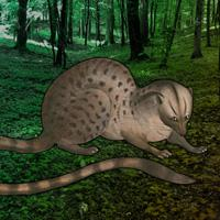 play Escape Game: Save The Civet Cat