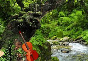 play Great Rainforest Escape